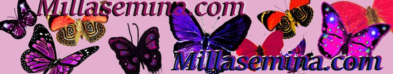 MILLA'S ADVENTURES